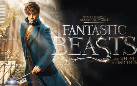 The adventures of Newt Scamander and where they began