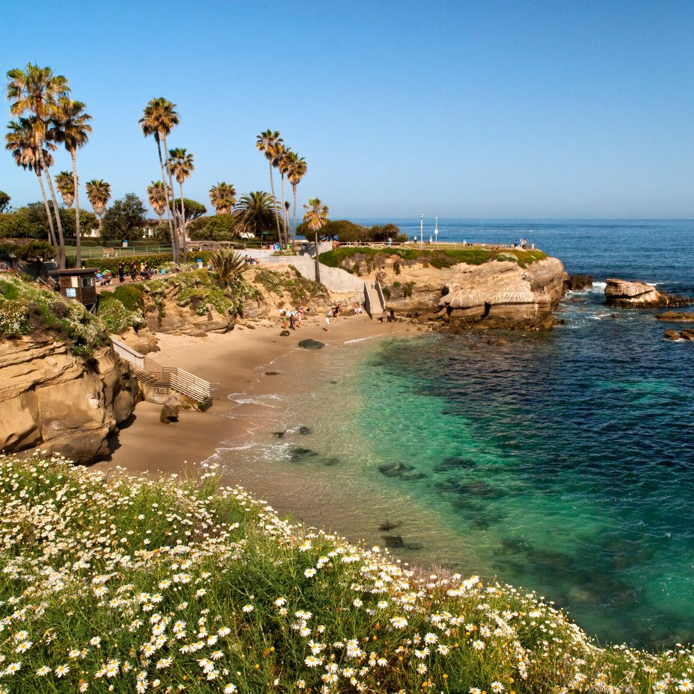 Best Beaches In Oceanside The Strand North
